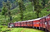 Sri lanka: Discover Sri Lanka