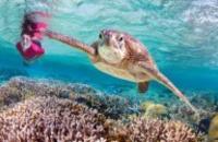 Australia: Great Barrier Reef Island Stays