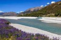 New Zealand: Complete New Zealand