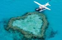 Australia: Queensland Wildlife & Nature