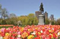 USA: New England Encompassed