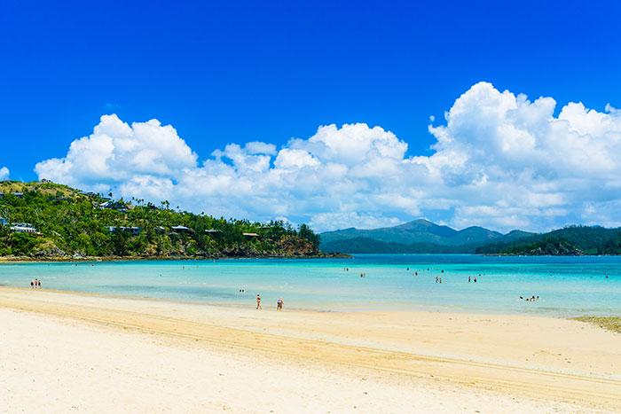Beach Hamilton Island Queensland