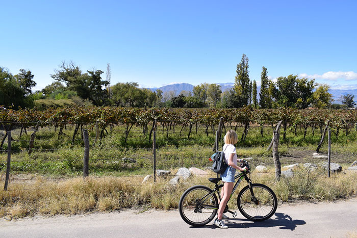 Biking around the bodegas Carlie Mesquitta