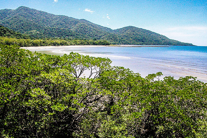 Cape Tribulation Richard Collett