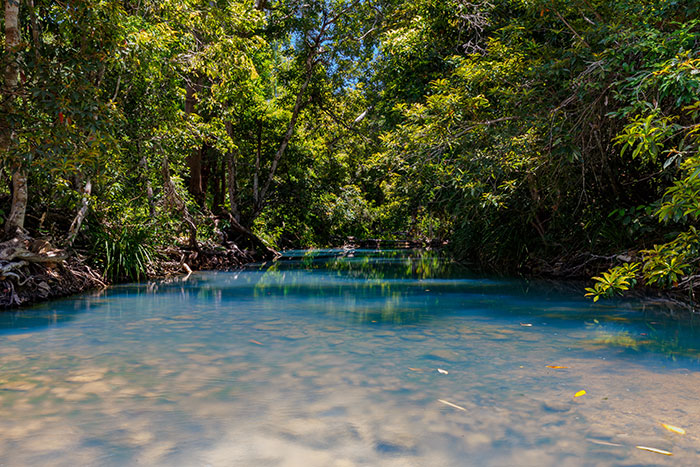 Cardwell Spa Pools, Queensland