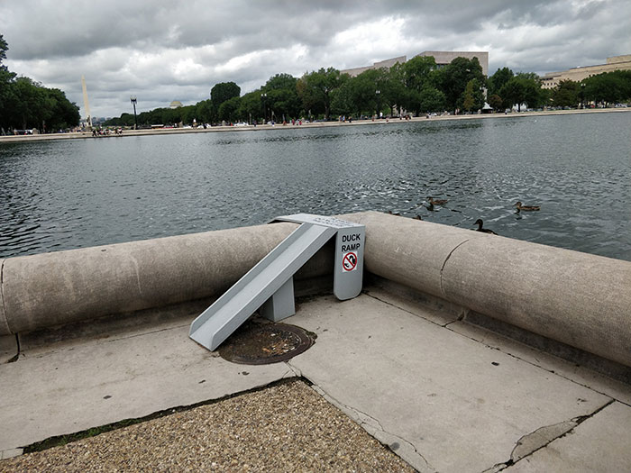 Duck ramps Washington DC Angela Griffin