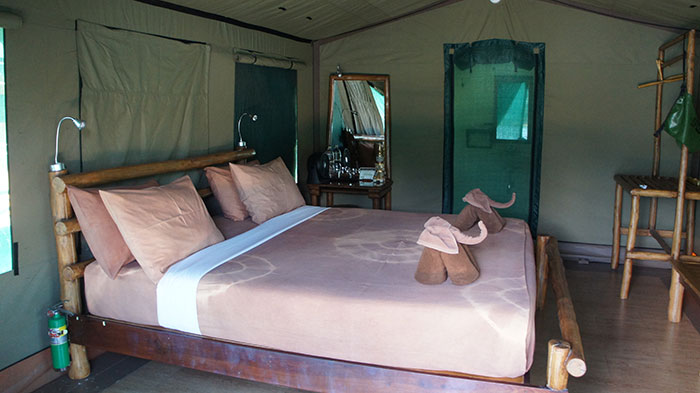 Inside a tent at Elephant Hills