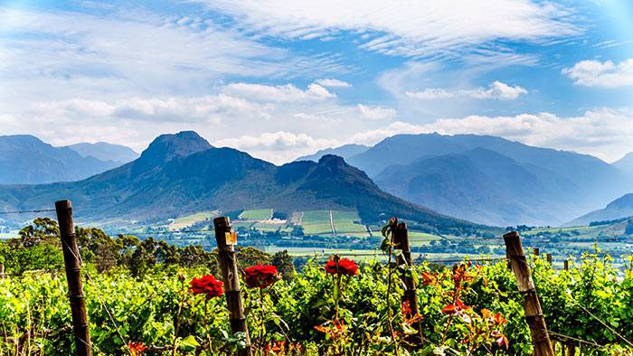 Franschhoek Valley scenery, South Africa