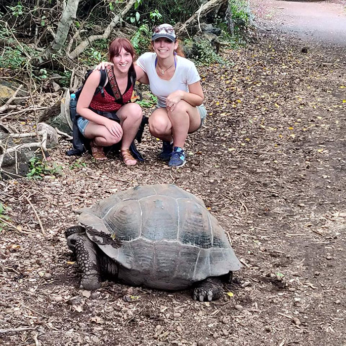 Galapagos tortoise Jessica French