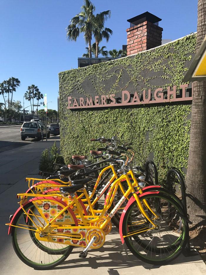 Hiring bikes LA Carlie Mesquitta