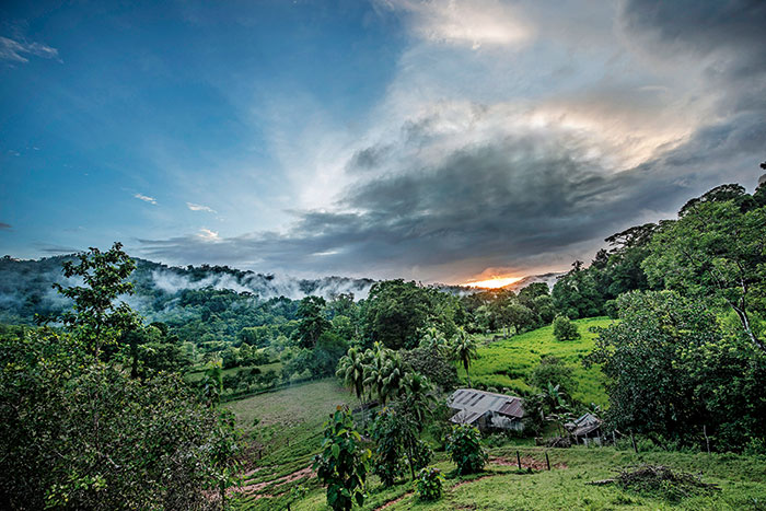 Homestay Costa Rica