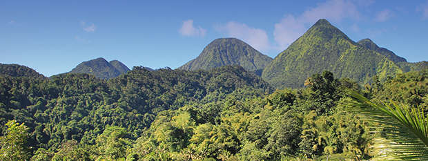 Lush green landscapes of the Dominican Republic
