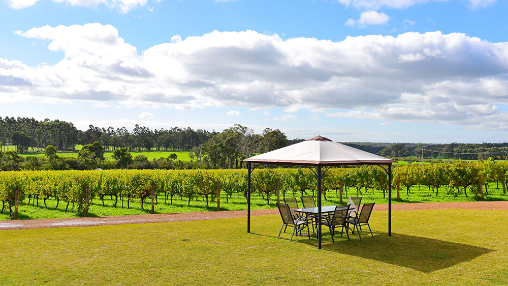 Margaret River vineyard Western Australia