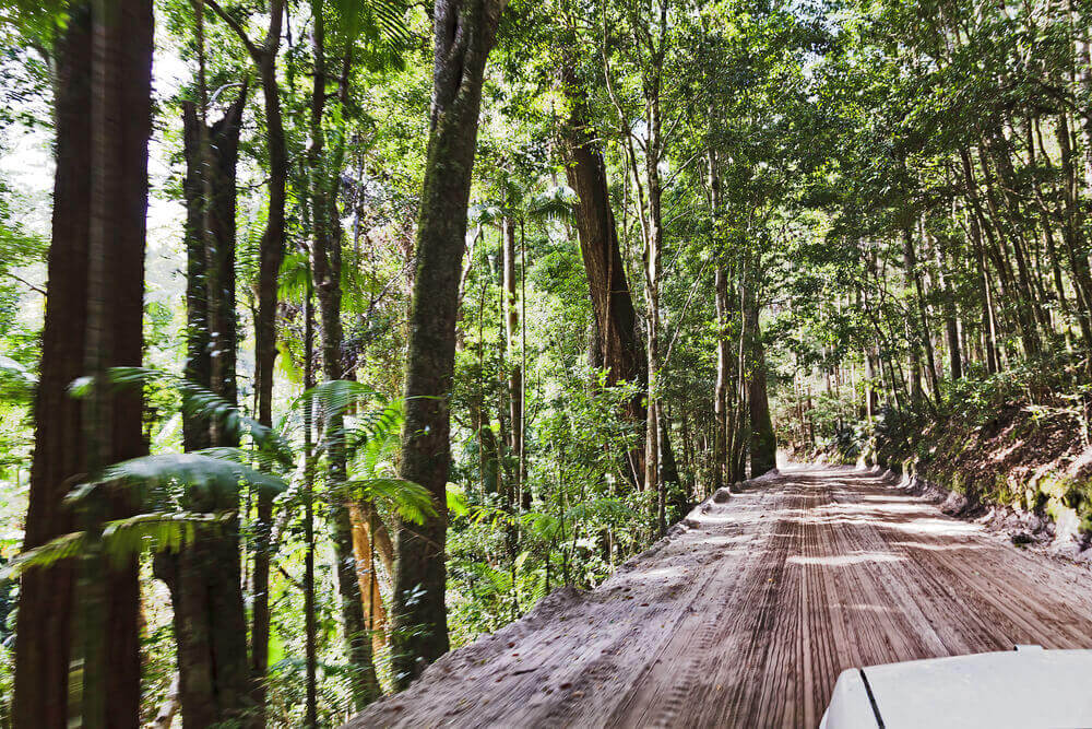 Fraser Island Sunshine Coast