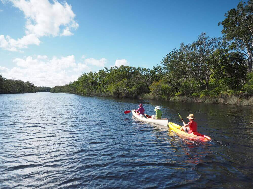 Noosa everglades kayak sunshine coast