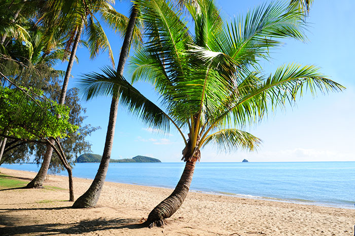 Palm Cove beach Queensland