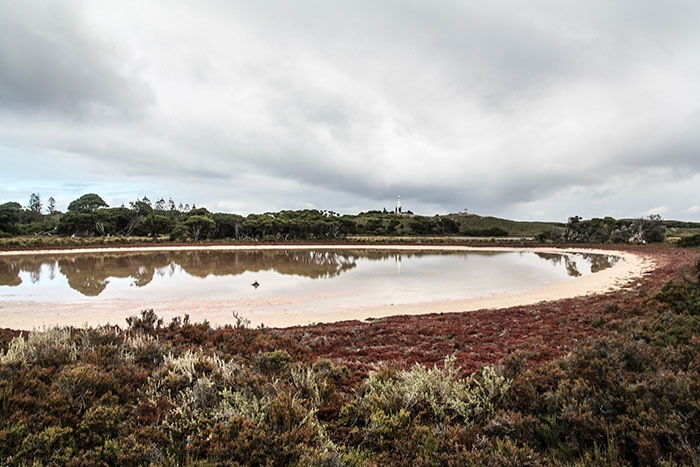 Pink Lake Rottnest Island Richard Collett