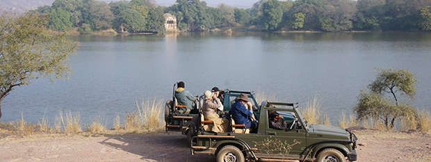 A safari jeep in Ranthambore National Park