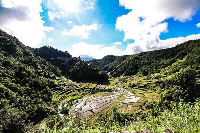 Rice terraces Richard Collett