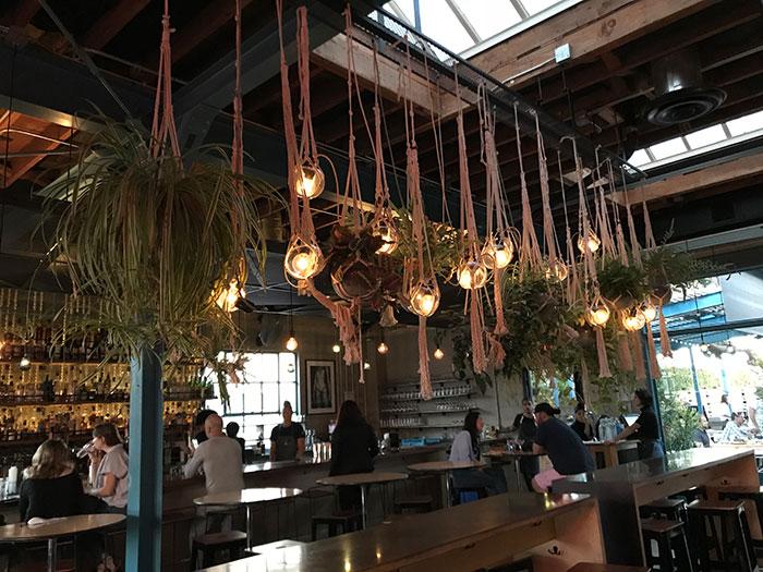 Rose Cafe Venice Carlie Mesquitta