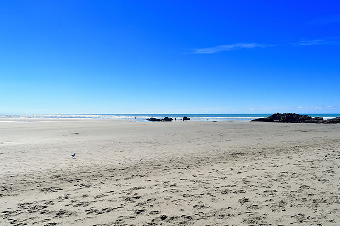 Sumner Beach, New Zealand (image: Hayley Lewis)
