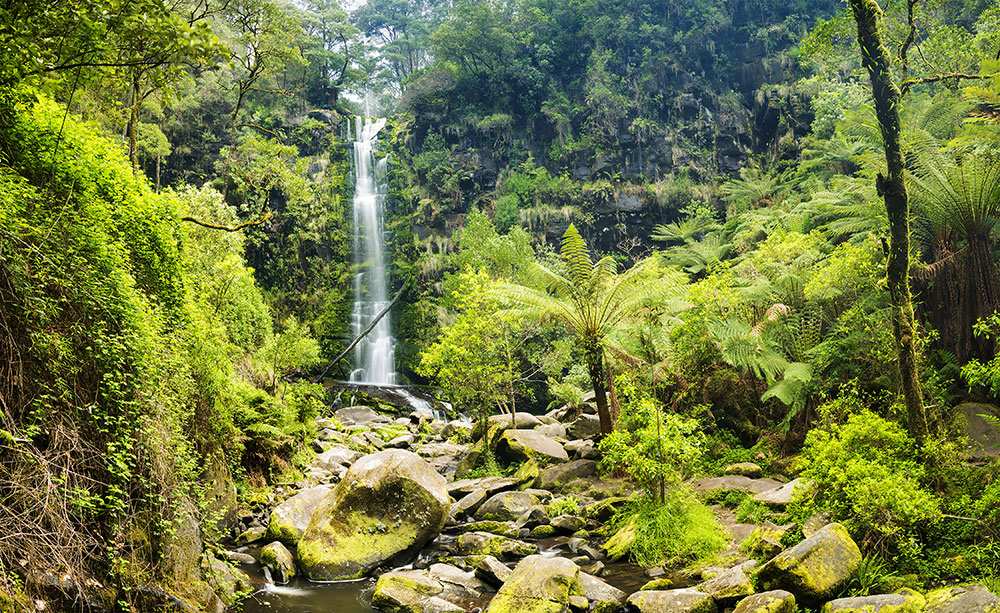 Waterfall in Great Otway National Park, Victoria