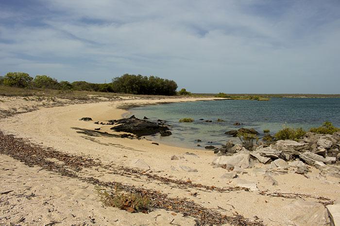 Cygnet Bay, Western Australia
