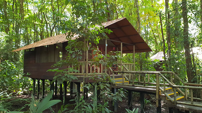 Evergreen Lodge, Tortuguero, Costa Rica (image: Bradley Cronin)