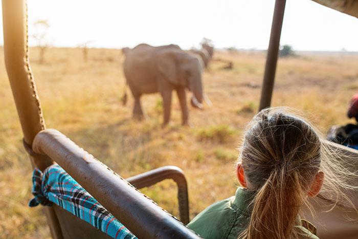 Family safari, Africa