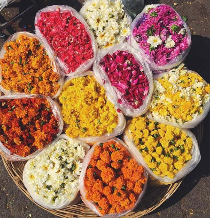 Flowers in Mumbai, India