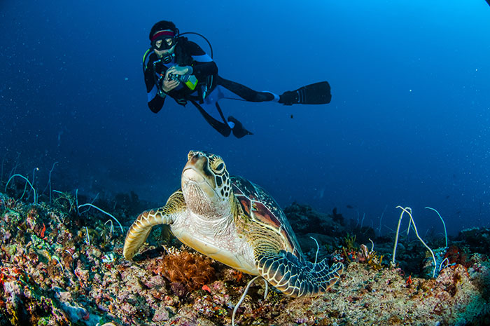 Gili Islands, scuba diving, Indonesia