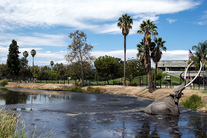 La Brea tar pits, Los Angeles, California