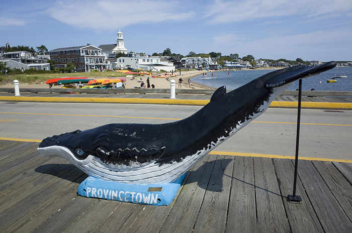 Provincetown, USA, whale statue