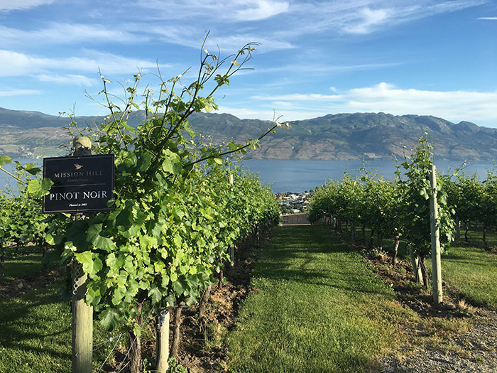 Mission Hill Winery, Kelowna