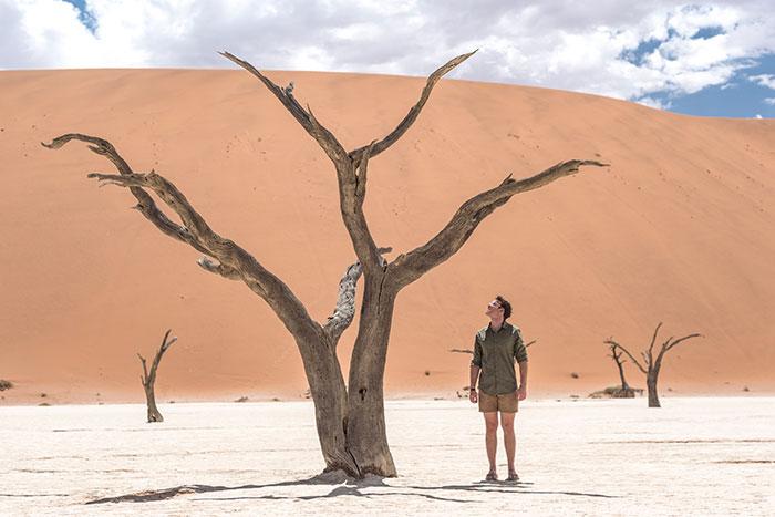 Skeleton Forest, Namibia