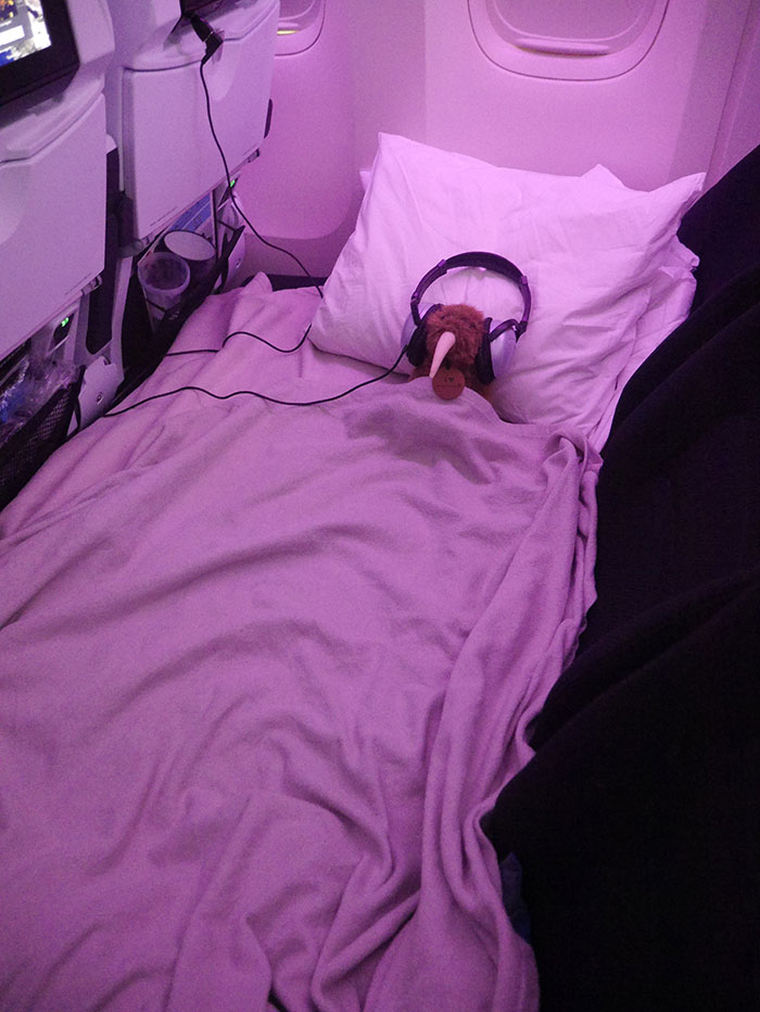 Pete the Kiwi, Air New Zealand Economy Skycouch