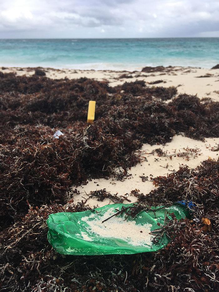 Plastic, Bahamas