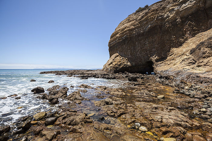 Tidal pools at Abalone Cove, Los Angeles