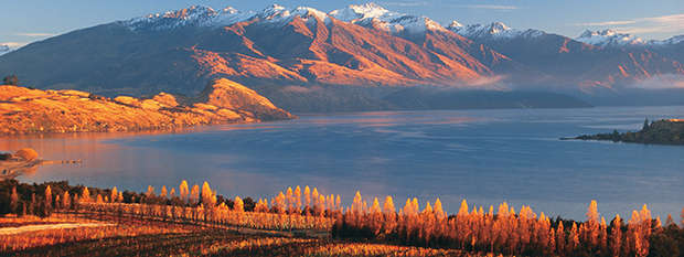 Lake Wanaka vineyard, Central Otago