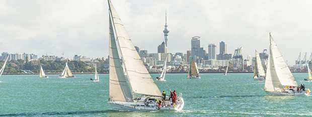 A sail boat on Waitemata Harbour