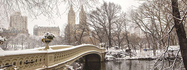 New York's Central Park covered in snow