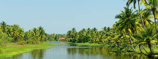 A backwater in Kerala