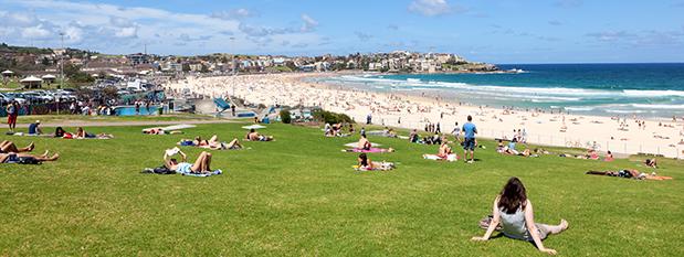 People sitting on the lawn near Bondi Beach