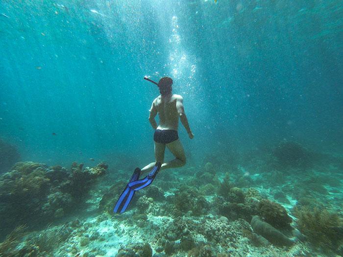 Snorkelling in Dominica Ross Jennings