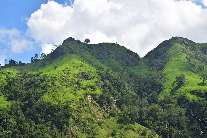 Sri Lanka scenery Sophie Cole
