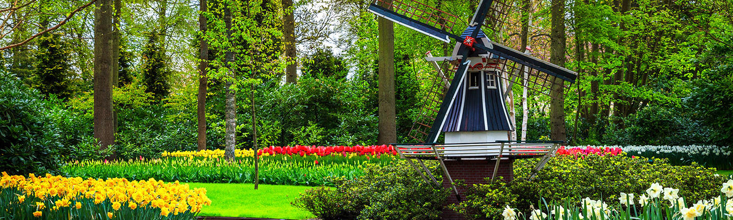 Flights to the Netherlands
