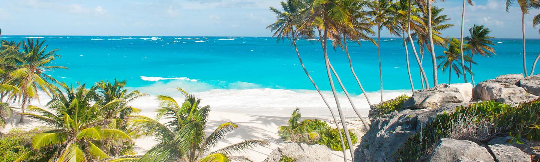 A beach in Barbados