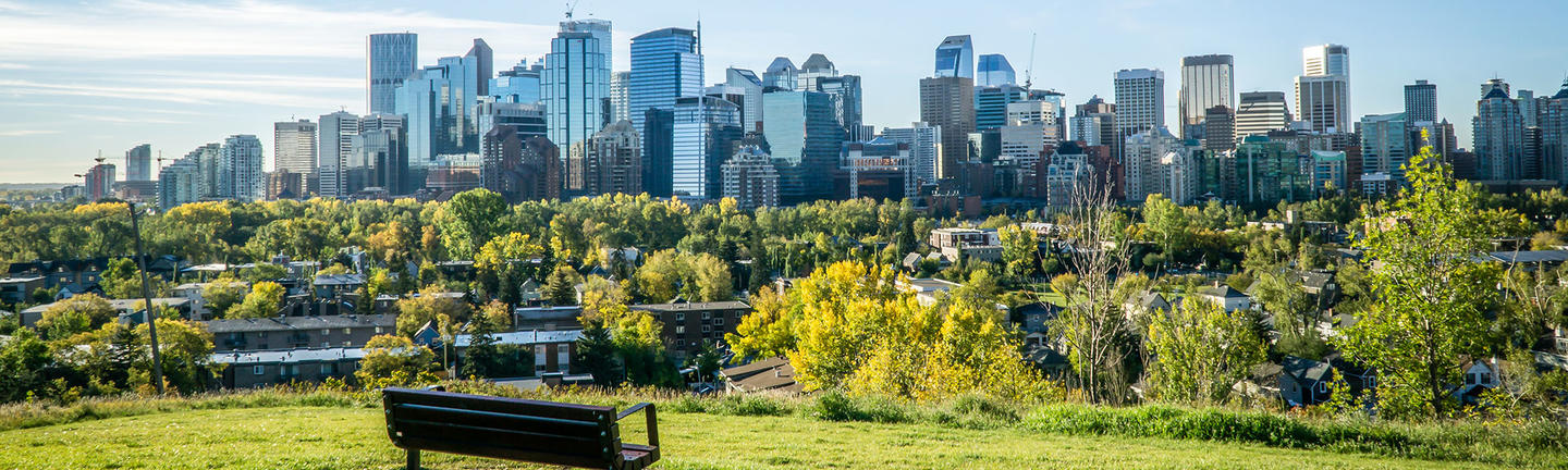 A park overlooking the skyline in Calgary