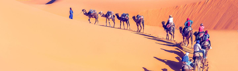 Group travel, desert