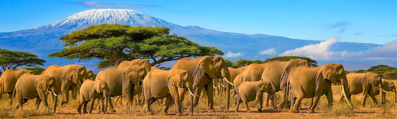 Tanzania holidays